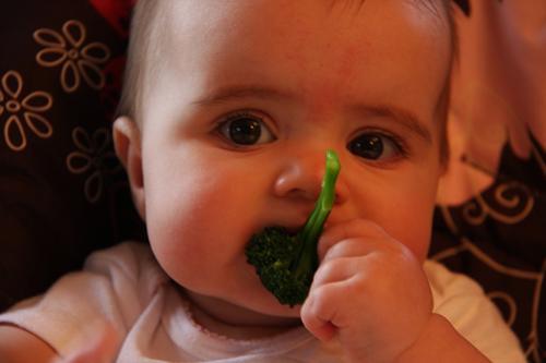 Малыш и брокколи