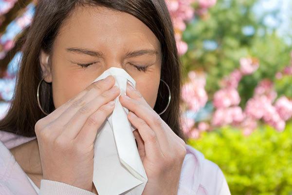 Чихание при аллергическом гайморите