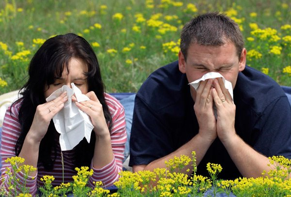 Родители-аллергики