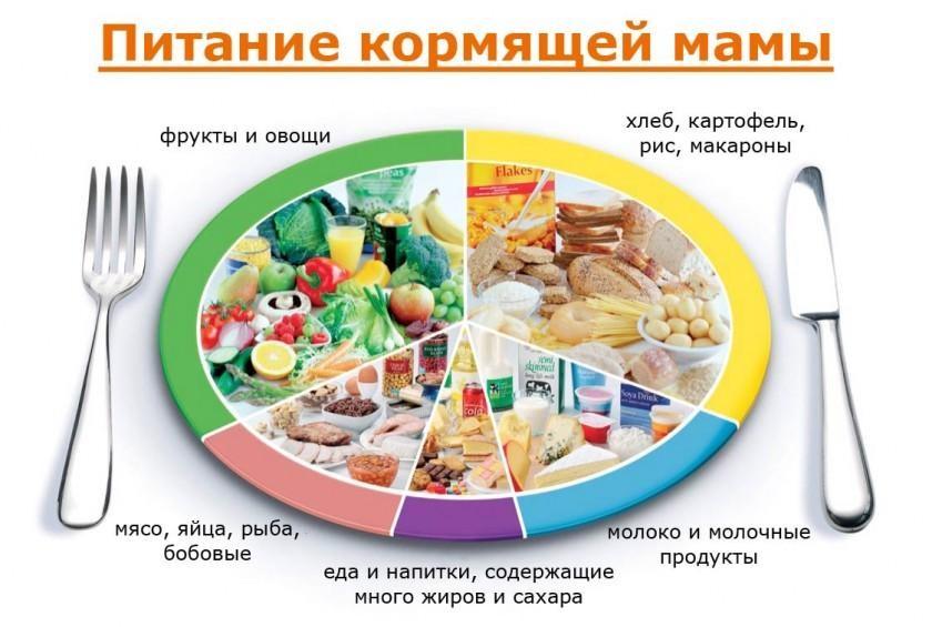 Распределение продуктов в рационе мамы