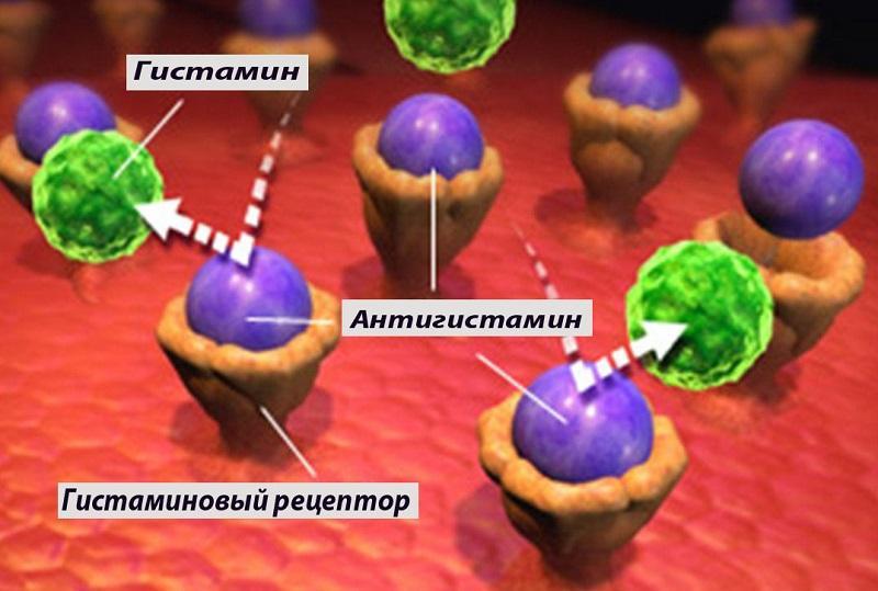 Блокировка гистаминовых рецепторов