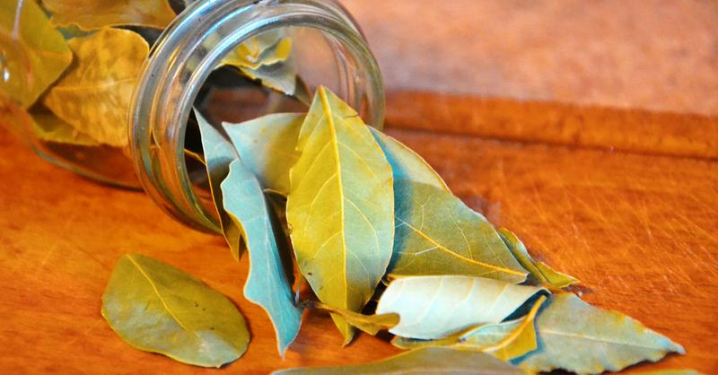 Качественный лавровый лист