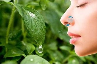 Фильтры для носа от аллергии