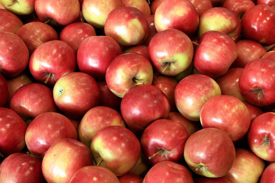 Красные сорта яблок